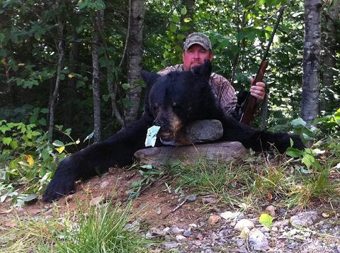 Hunted Black Bear