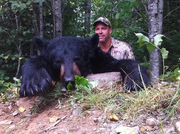 Ontario Black Bear Caught