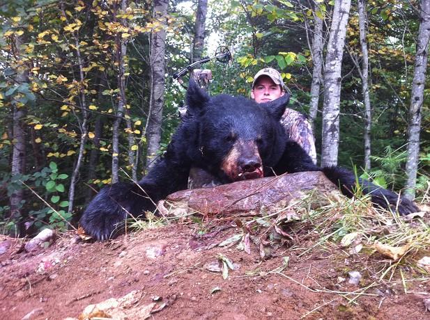 Ontario Black Bear